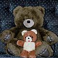 Teddy Elder Care Bear by LeeAnn McLaneGoetz McLaneGoetzStudioLLCcom