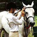 Teen Equestiran by Roger Soule