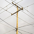 Telephone Pole And Electric Cables by Paul Edmondson
