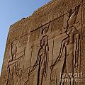 Temple Of Dendara Egypt by Bob Christopher