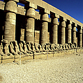 Temple Of Karnak, Luxor - Egypt by Hisham Ibrahim