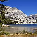 Tenaya Lake by Rod Jones
