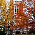 Tennessee Ayers Hall by University of Tennessee Athletics