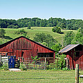 Tennessee Barn 4 by Teresa Blanton