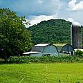Tennessee Farm 1 by Douglas Barnett