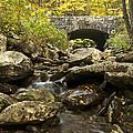 Tennessee Stone Bridge 6062 by Michael Peychich