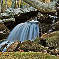 Tennessee Waterfall 5962 by Michael Peychich