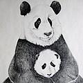 Terris Pandas by Kathrine McMurray