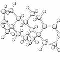 Testosterone Hormone Molecule by Laguna Design