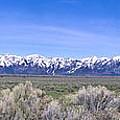 Teton National Park Panarama by Douglas Barnett