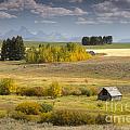 Teton Valley by Idaho Scenic Images Linda Lantzy