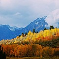 Teton's Fall Colors by Eric Tressler