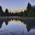 Tetons Over The Beaver Pond by Mark Harrington