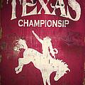 Texas Championsip by Eena Bo