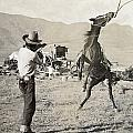 Texas: Cowboy, C1910 by Granger