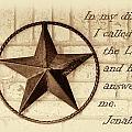 Texas Iconic Star by Linda Phelps