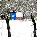 Texas Snow by Tisha Clinkenbeard