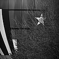 Texas Star by Kim Henderson