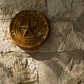 Texas State Seal by Michael Flood