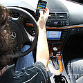 Texting And Driving by Photo Researchers, Inc.
