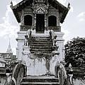 Thai Architecture by Shaun Higson