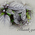 Thank You Card - Silver Leaves And Berries by Mother Nature