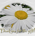 Thank You For The Gift Greeting Card - White Daisy by Mother Nature