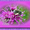 Thank You Greeting Card - Bumblebee On Ironweed by Mother Nature