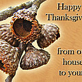 Thanksgiving Card - Where Acorns Come From by Mother Nature