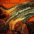 Thanksgiving Greeting Card by Chris Berry