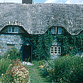 Thatched Roof, England by Photo Researchers, Inc.