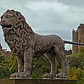 The Alnwick Lion by David Pringle