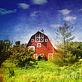 The Amish House by Susanne Van Hulst