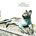 The Asian Civilisations Museum Cat by Steve Taylor