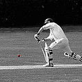 The Batsman by Chris Day