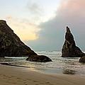 The Beaches Of Bandon Oregon by Athena Mckinzie