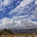 The Big Sky by Dominic Piperata