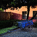 The Blue Cart by Tom Bell