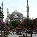 The Blue Mosque  - Istanbul by Christiane Schulze Art And Photography