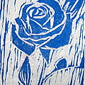 The Blue Rose by Marita McVeigh