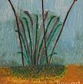 The Bog Pond by Gregory Davis