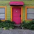 The Brightly Colored Door Illustrated by Ben Freeman