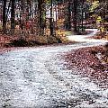 The Broken Road by Lynne Jenkins