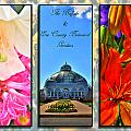 The Buffalo And Erie County Botanical Gardens Triptych Series With Text by Michael Frank Jr