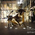 The Bull by John Chatterley