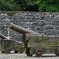 The Cannons Of Bunratty Castle by David Theroff
