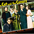 The Cat And The Canary, Front To Back by Everett