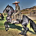 The Charro by Tommy Anderson