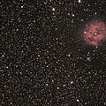 The Cocoon Nebula by Phillip Jones