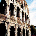 The Colosseum by Donna Proctor